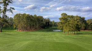 Trou 8 - Augusta National GC